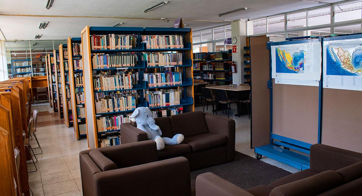 biblioteca-gal-2.jpg